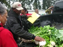 Turnips grown by the Wright's of Happy Land Farm, photo courtesy of Kavanah Ramsier